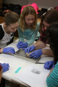 Undergraduate Megan Stumpf acts as a neuroscientist role model as she guides participants through a sheep brain dissection.