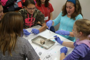 Participants find their first experience handling brain tissue very exciting!